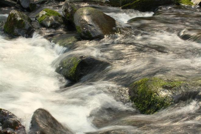 Swirling Stream With Rocks
